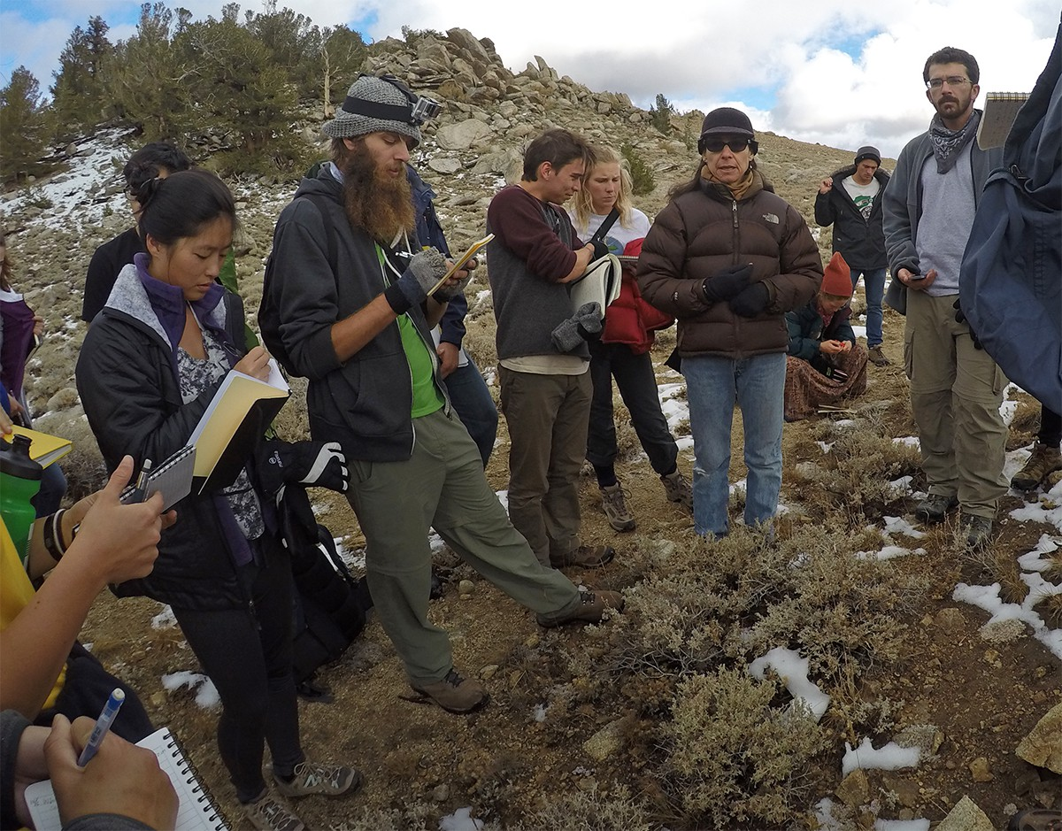 NRS field course
